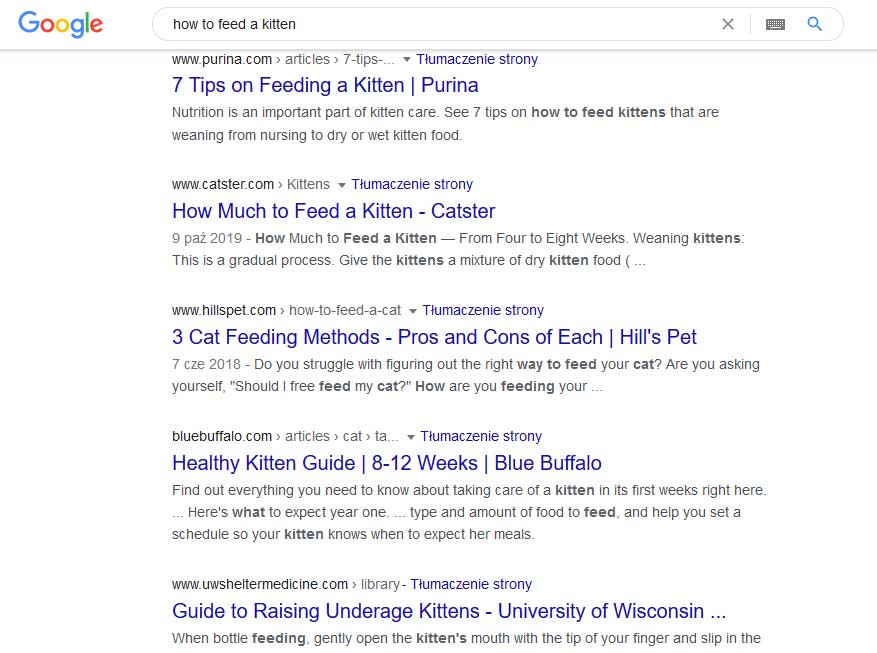 Google search results on the keyword how to feed a kitter
