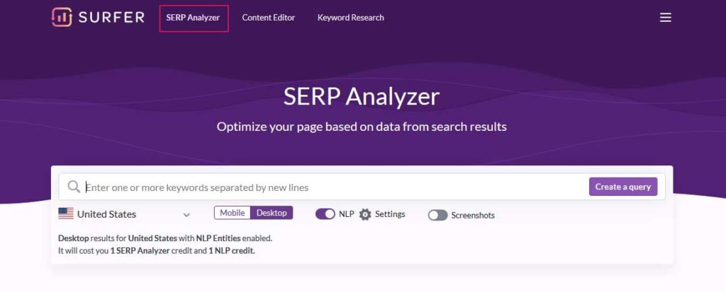 The inferface of Surferseo tool with Serp Analyser feature